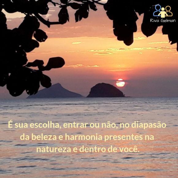 beleza e harmonia